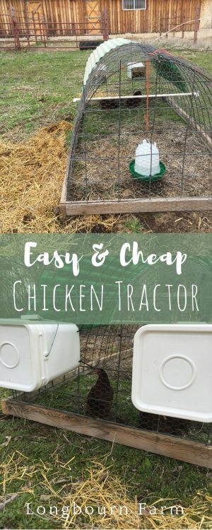 How to build an easy, DIY Chicken Tractor with a simple frame wire outside. Use materials you have easily available to make it cost effective, or free!