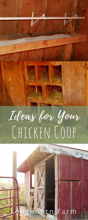 Our chicken coop is complete! We turned a couple of old stalls from a barn that we demolished into an awesome coop and run. See how we did it and get some awesome chicken coop ideas for your own place!