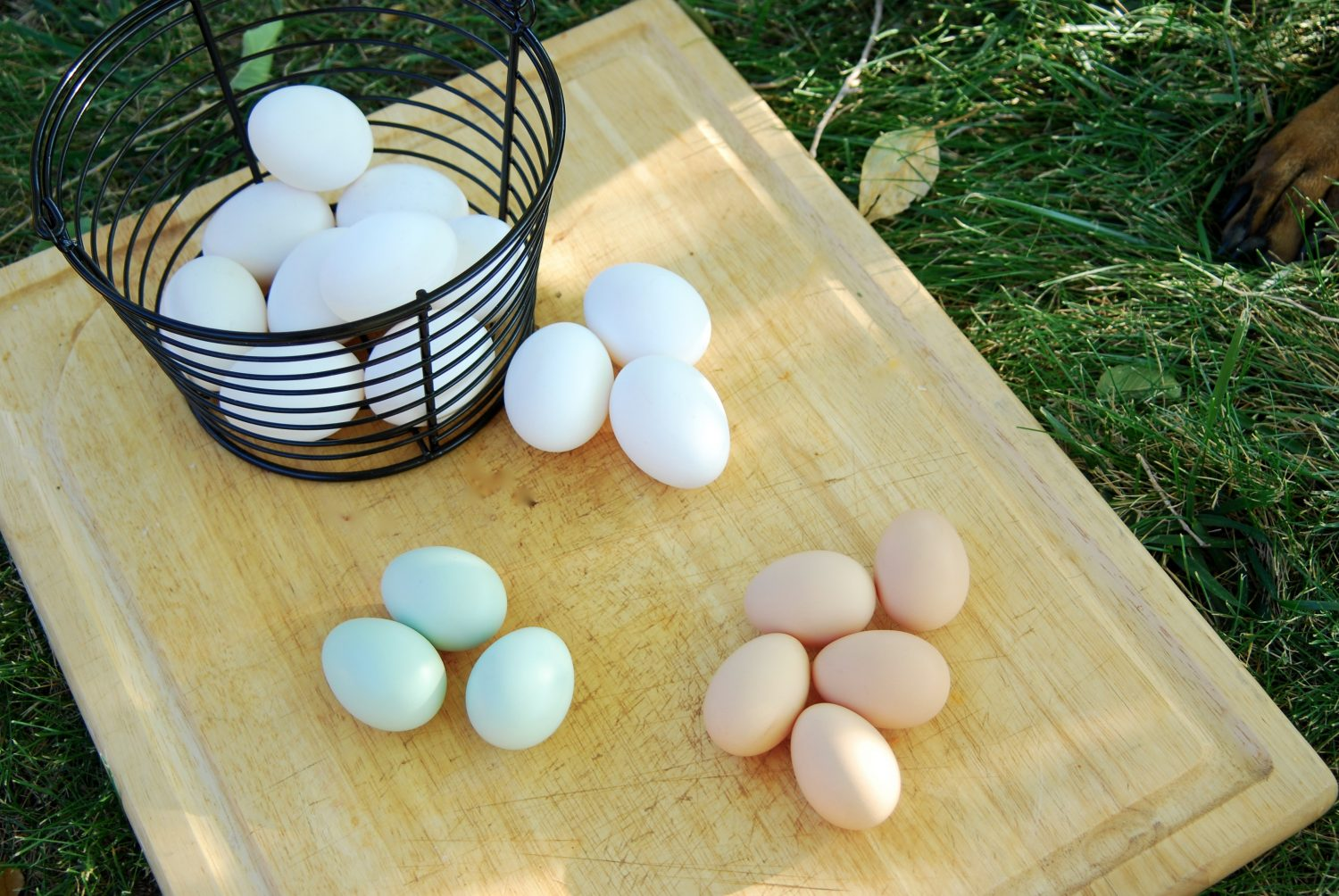 Top view of three groups of eggs on a cutting board next to a basket of eggs.