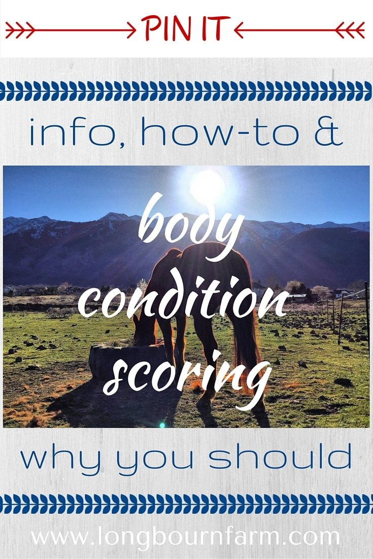 A thorough outline of body condition scoring across species. It's simple to learn and a valuable piece of information for anyone with animals. via @longbournfarm