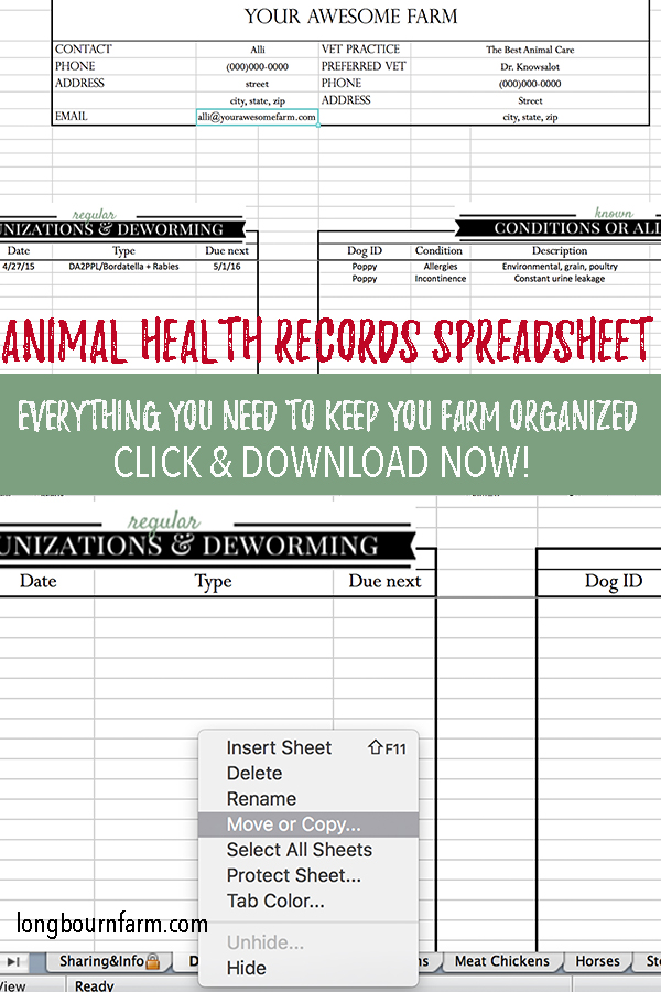 Learn how to use and download my comprehensive animal health records spreadsheet. Almost every species you need and every category you need to keep track of. #animal #farm #homestead #hobbyfarm #animalrecords #recordsspreadsheet #spreadsheet #animalspreadsheet #animalrecords #vetrecords #veterinarian #hobbyfarmer #smallfarm #homesteading