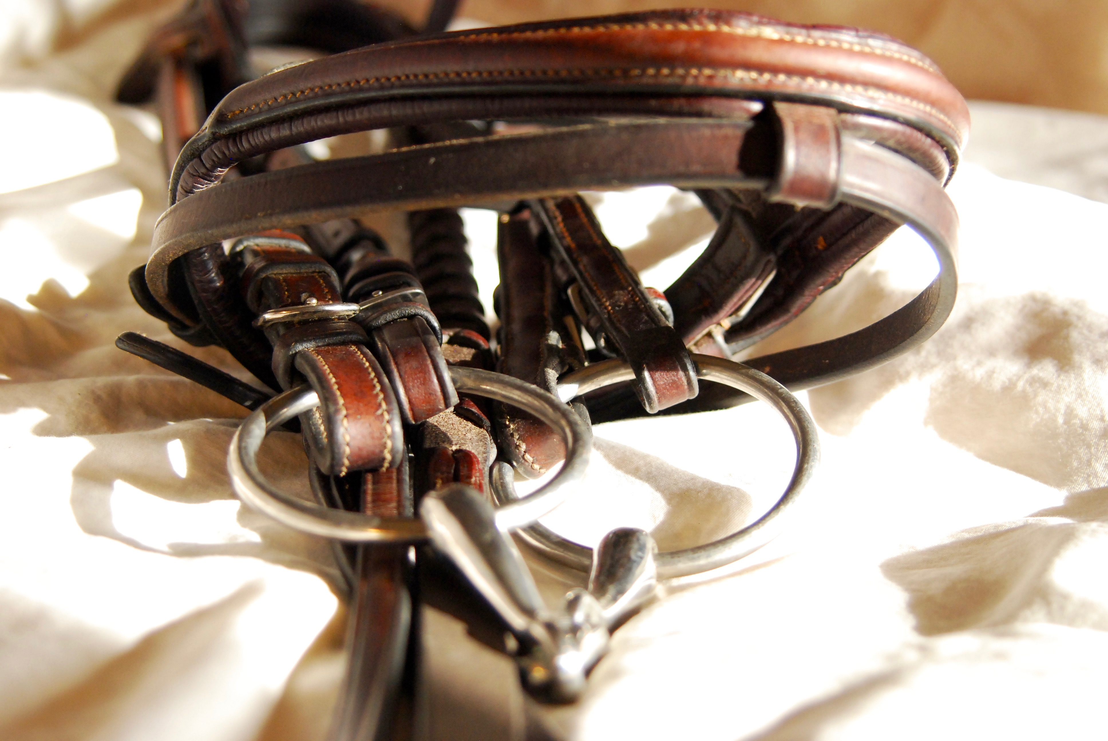 Clean bridle