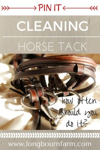 How often should you be cleaning horse tack? More often than you think! Check out this pin for a good schedule and some helpful tips!
