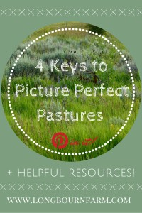 4 keys to get picture perfect pastures on your small acreage!
