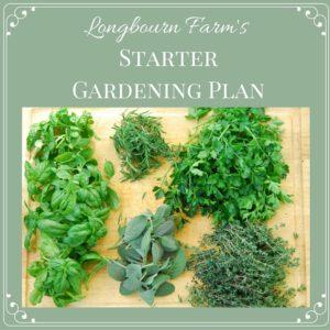 Garden Starter Plan Tutorial