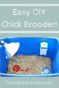 Easy DIY Chick brooder. Fast and easy to make, super simple to clean, and the prefect home for your little chicks!