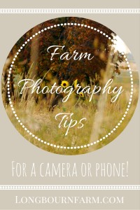 Farm Photography tips for your camera or phone!