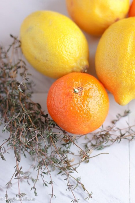 Close-up of thyme, lemons, and an orange.