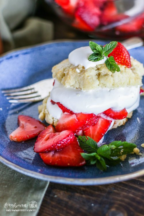 Close-up of homemade easy strawberry shortcake on a blue plate.