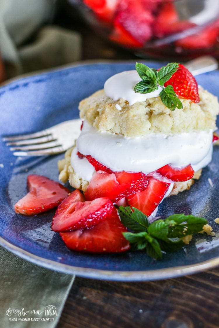Homemade Easy Strawberry Shortcake Recipe Longbourn Farm