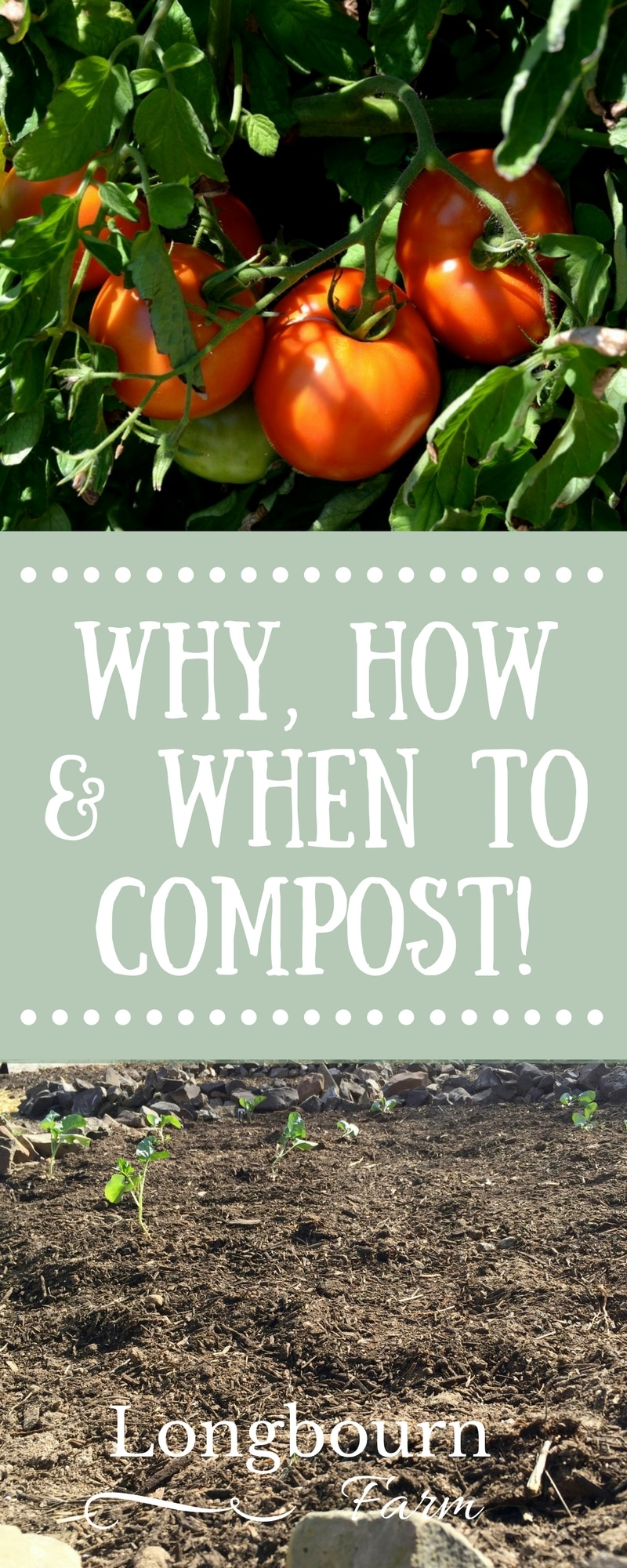 Check out this post to find out how to compost, why you should compost and when to add compost to your garden! Full of great gardening tips. via @longbournfarm