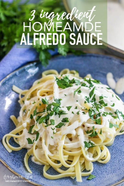 Never buy Alfredo sauce again! This easy homemade alfredo sauce is amazingly delicious and simple to make. Only a handful of ingredients! #longbournfarm #alfredo #alfredosauce #fettuccinealfredo #fettuccine #homeamdealfredo #homemadepasta #homemadecreamypasta #creamypasta #creampasta #homamdefettuccine #fettuccinealfredopasta #fettuccinealfredosauce