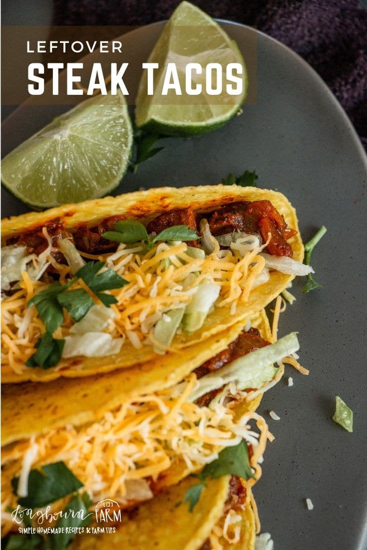 Learn how to make steak tacos from leftovers so you don't have to waste, but don't have to eat reheated steak either. Win-win!