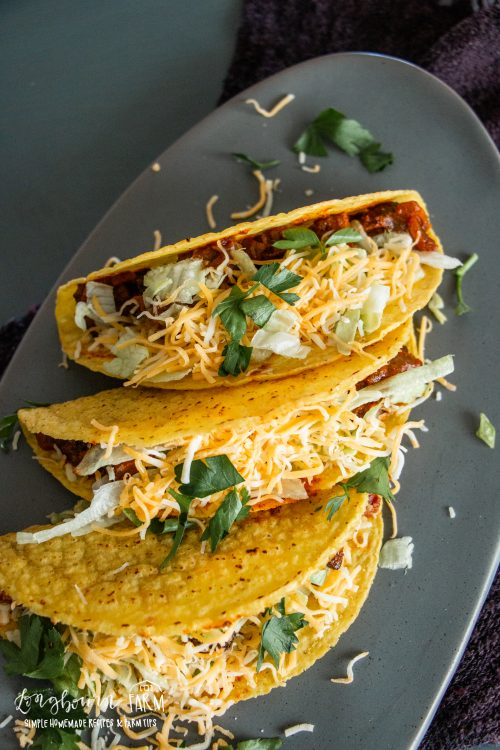steak tacos in a hard crunchy shell arranged on a plate with shredded cheese