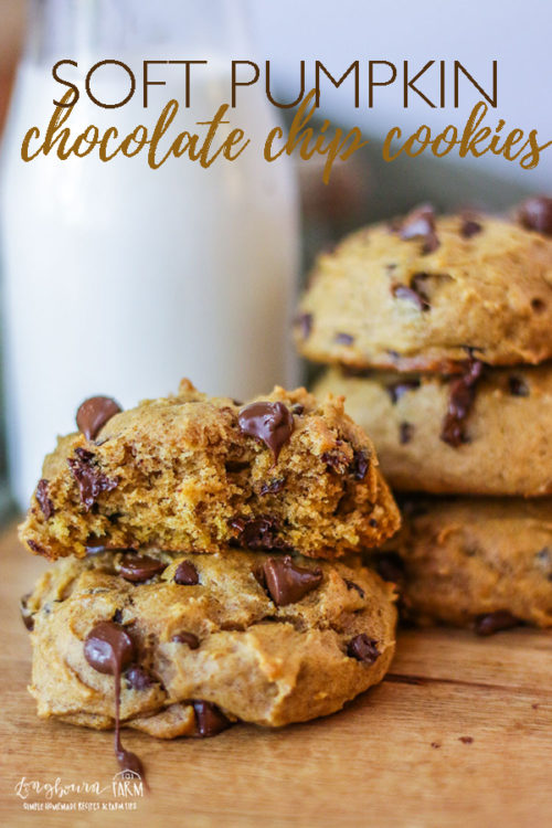 These soft chocolate chip pumpkin cookies are light, fluffy, and soft. This recipe is perfect for Fall! Easy to make and simple ingredients! #longbournfarm #pumpkinrecipe #pumpkincookie #pumpkincookies #chocolatechippumpkin #chocolatepumpkin #chocolatechippumpkincookies