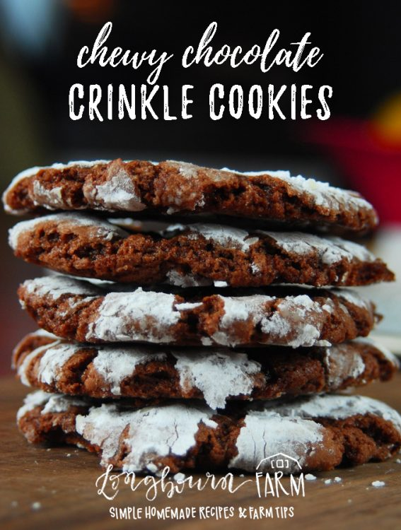 Deliciously easy chewy chocolate crinkle cookies from scratch are full of chocolate flavor, have a great chewy texture, and are perfect for holiday baking! #cookies #christmascookies #holidaybaking #holidaycookies #christmasbaking #baking #christmascooking #christmas #food #christmasfood #chocolate #chocolatecookies #chocolatecrinklecookies #easychocolatecookies