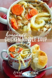 Making chicken noodle soup from scratch is so delicious. Learn how to make amazing flavorful broth and perfect egg noodles! Try it today. #chicken #soup #noodles #eggnoodles #homemadeeggnoodles #chickensoup #chickennoodlesoup #homemadesoup #homemadechickensoup #soupfromscratch #chickensoupfromscratch #fromscratch