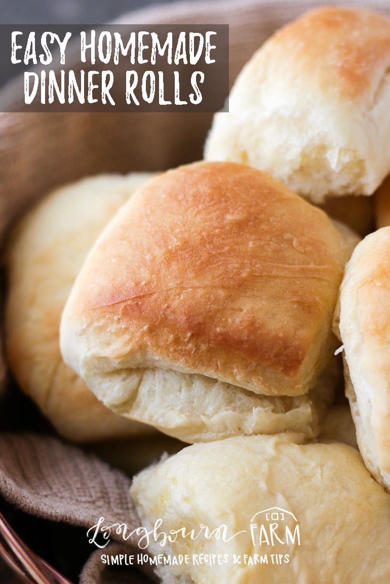 This easy dinner roll recipe is perfect for any meal, especially holiday dinners! No kneading required, these soft, fluffy, rolls are perfect every time. #dough #bread #baking #bakingfromscratch #rolls #dinnerroll #bakingbread #homemadebread #homemaderolls #breadrolls #bakingrolls #yeastbread #yeastrolls #easyrolls via @longbournfarm