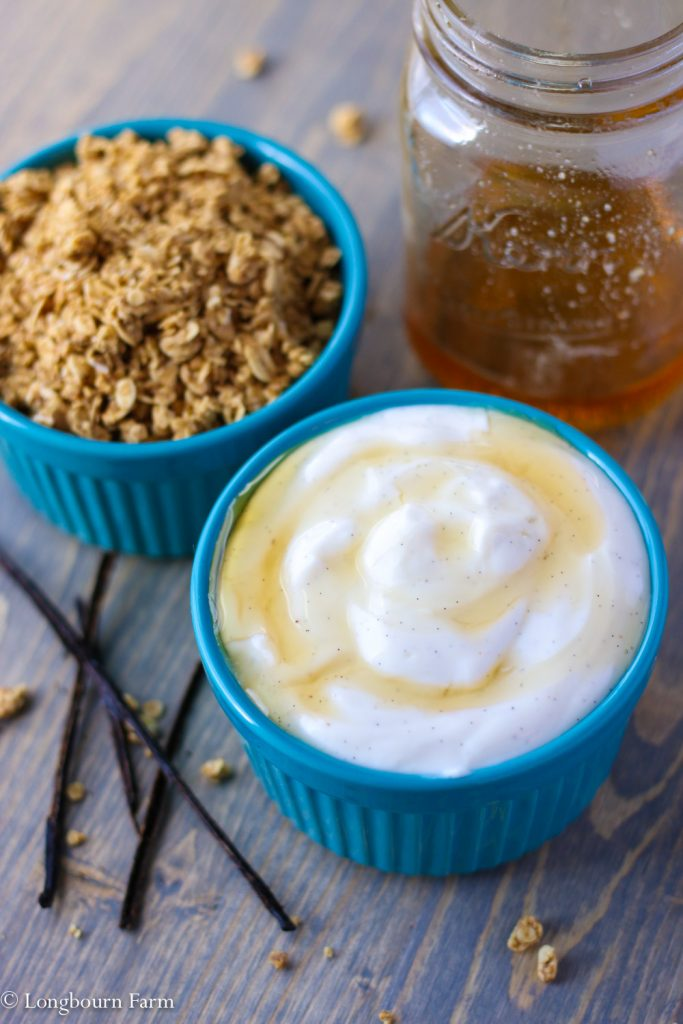 Quick Breakfast Idea: flavored yogurt + granola!