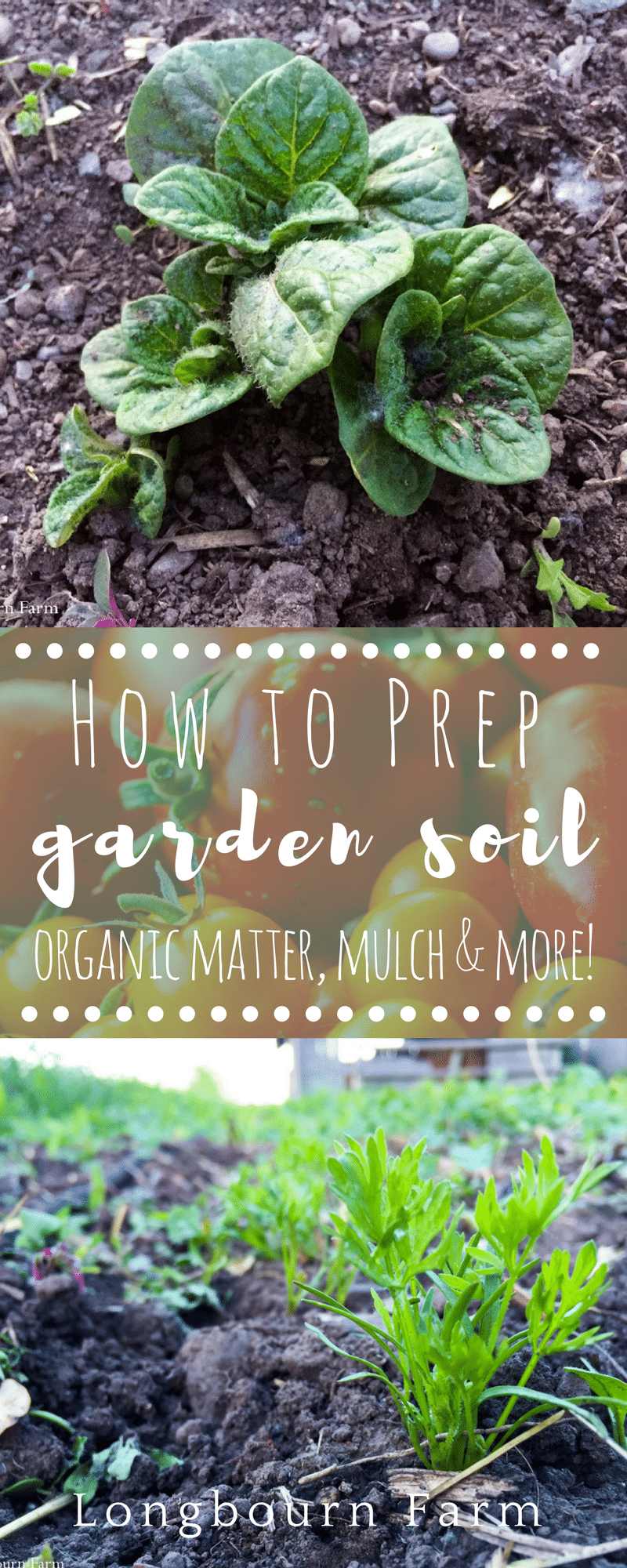 Learn how to prep your garden soil perfectly! This post covers drainage and compaction as well as rates and reasoning for adding organic matter and mulch! via @longbournfarm