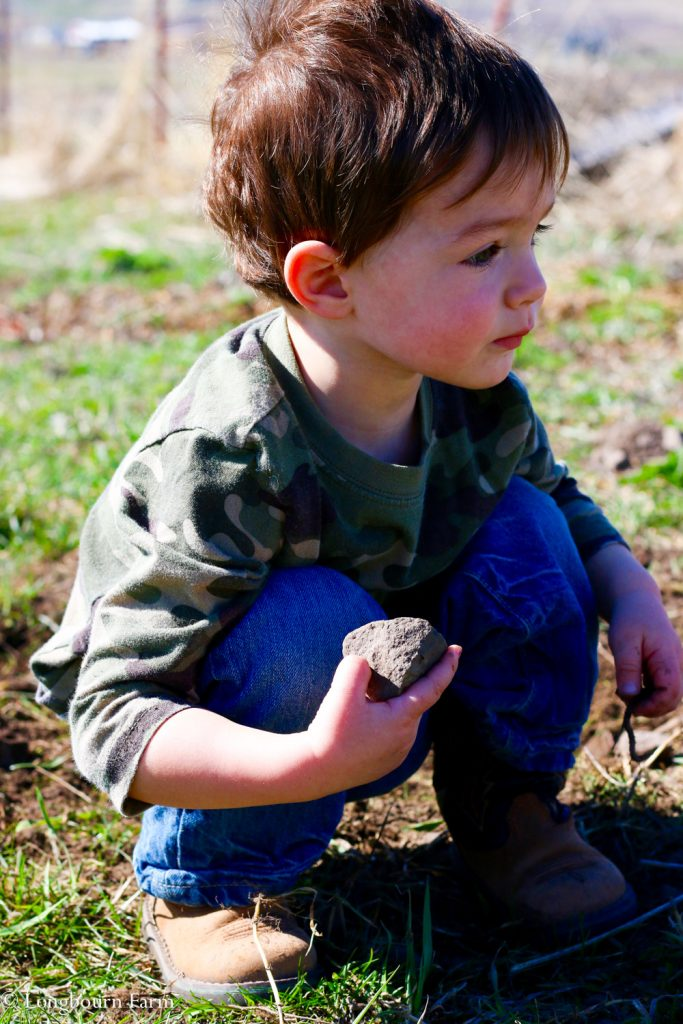 Abram with a rock, per usual.
