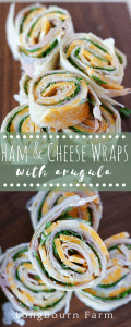 These easy ham roll ups make the perfect quick lunch or a delicious appetizer that is sure to please everyone! Kid and adult approved!