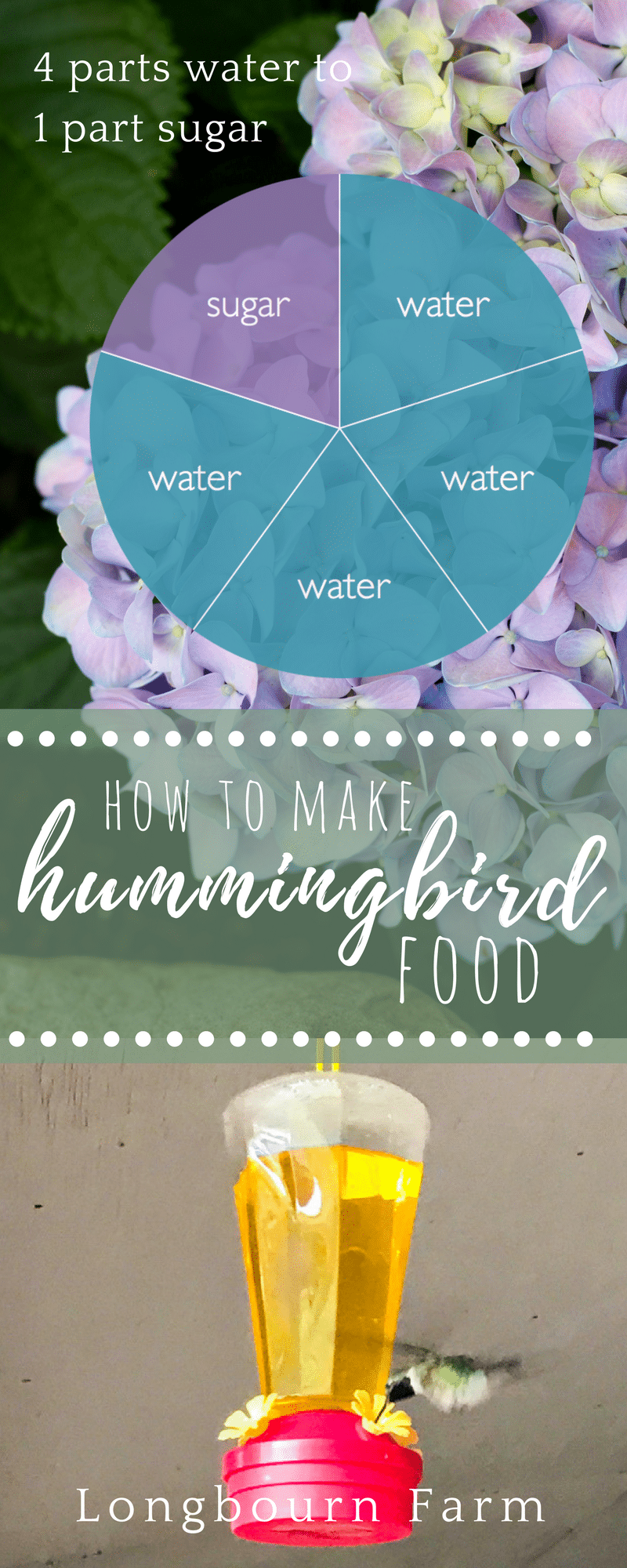 Learning how to make this hummingbird food recipe is as simple! Get the exact directions here and keep those little birds coming back to your yard! via @longbournfarm