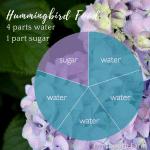 How to make Hummingbird Food, 4:1 ratio of water to sugar.