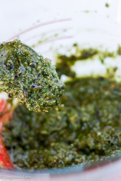 Homemade Pesto is so simple and incredibly versatile! Use this classic basil pesto recipe on pasta, in sauces, in bread, or even as a sandwich spread!