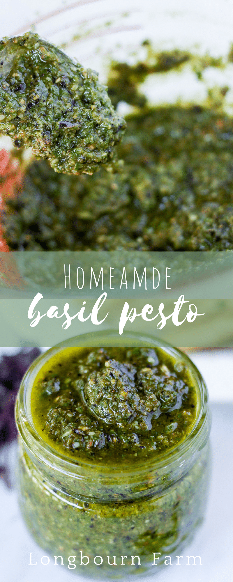 Homemade Pesto is so simple and incredibly versatile! Use this classic basil pesto recipe on pasta, in sauces, in bread, or even as a sandwich spread! via @longbournfarm