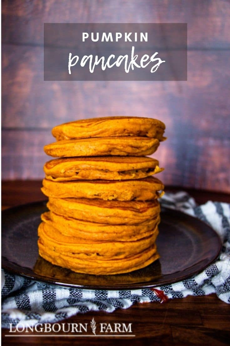 These glorious pumpkin spice pancakes are perfect for fall. Soft and fluffy with just the right amount of spice!