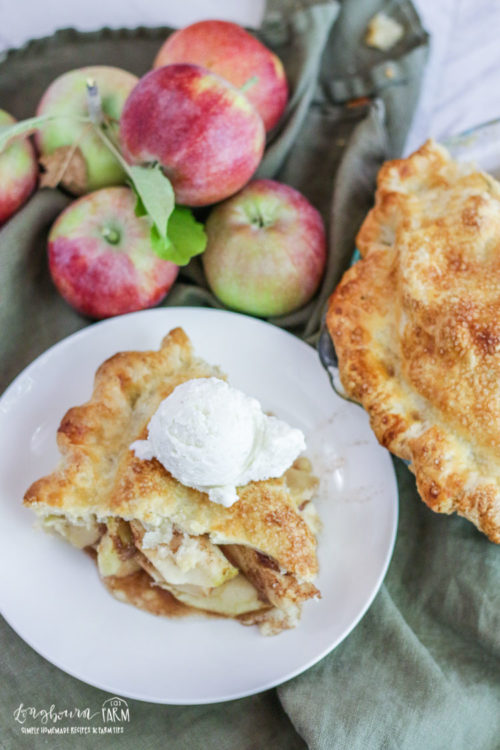 Slice of homemade apple pie next to whole pie.