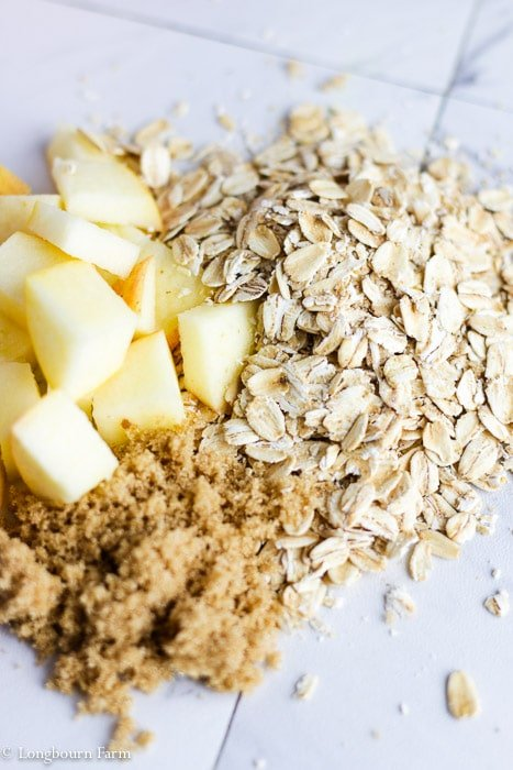 Small pile of oats next to a small pile of apples and brown sugar.