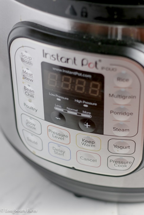 Close-up of an instant pot front panel.