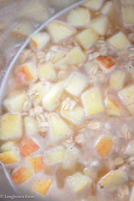 Apple cinnamon instant pot oatmeal ready to cook in an instant pot.