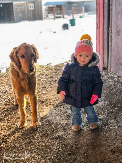Aspen standing with Maverick behind the chicken coop.
