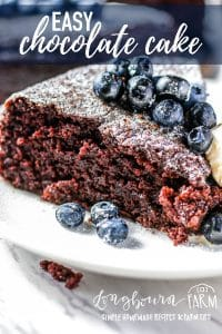 This basic chocolate cake recipe uses simple, old-fashioned ingredients and turns out perfectly every single time! Chocolatey, chewy, and delicious! It's a timeless chocolate cake that can be used so many ways, it's the perfect chocolate cake recipe! #chocolate #chocolatecake #cake #homemade #homemadecake #homemadechocolatecake #dessert #baking #bakingcake #cakebaking #easyrecipe #easycake #bakingdessert #fruit #simplecake #singlecake