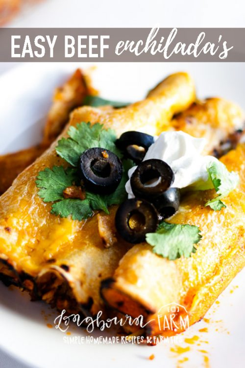 Easy beef enchilada recipe! This recipe is so good with a completely homemade enchilada sauce that doesn't take a blender to make. SO EASY! Plus 3 ideas for making beef enchilada freezer meals! #freezermeal #enchiladas #beef #beefenchiladas #easyenchiladas #bestenchiladas #homemadeenchiladas #homemademeal #homecooking #fromscratch