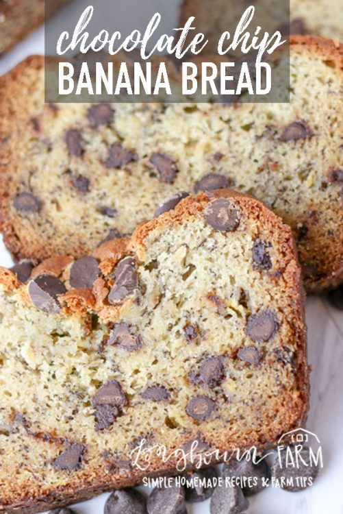 This chocolate chip banana bread recipe is an old family favorite that we have loved for years. This recipe is perfect, moist, and turns out every time. #baking #chocolate #banana #chocolatechip #bananabread #chocolatechipbananabread #chocolatebread #dessert #dessertbread #homemade #fromscratch #quickbread