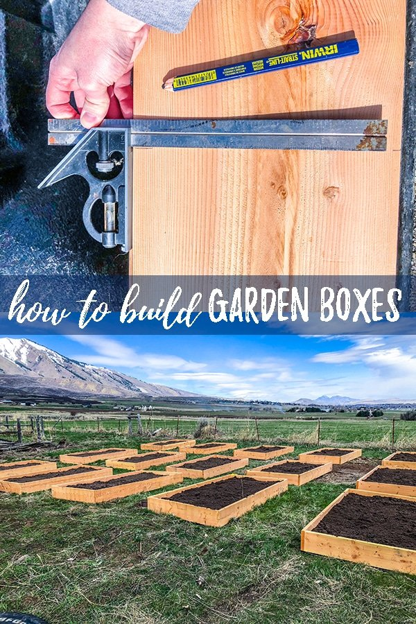 Building raised planter boxes is very easy, and usually more cost effective than purchasing them. Follow this easy DIY raised garden box tutorial for an easy design and step-by-step instructions. #garden #gardening #DIY #gardenbox #raisedplanter #raisedgarden #raisedgardenbed #raisedplanterbox #gardenbox #planterbox #buildingraisedgardenbeds #DIYgardenboxes #DIYraisedbed