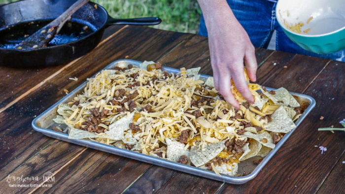 Sprinkling cheese over the beef and tortilla chips on a sheet tray during ground beef nacho assembly.