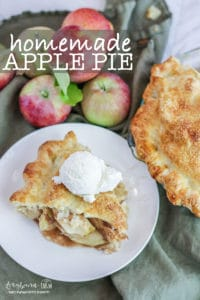 Homemade apple pie can sound intimidating but it really isn't complicated. This homemade apple pie is simple but delicious and the perfect dessert any time of the year. Homemade apple pie is great for Thanksgiving or Christmas. Homemade apple pie isn't hard and this recipe is easy with step-by-step directions! #homemadeapplepie #applepie #longbournfarm #homeamdepie #piefromscratch #easyapplepie #applepiefromscratch