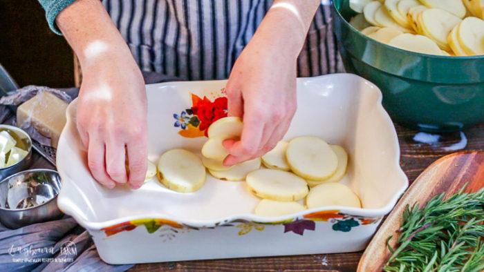 Layering potatoes in a baking dish.