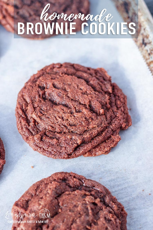 Homemade brownie cookies are super easy to make {no box required!}, chewy, soft, and the perfect chocolate fix! Easy to make in one bowl without a mixer. #browniecookierecipe #browniecookies #browniecookiescocopowder #homemadebrowniecookies #fromscratchbrowniecookies #browniecookiesnoboxmix via @longbournfarm