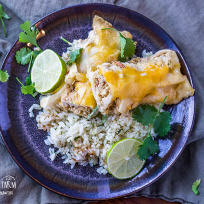 Slow cooker chicken enchiladas are packed with honey lime flavor and could not be easier to make! Prep in the morning and assemble them later for dinner! #chickenenchiladas #honeylime #honey #lime #honeylimechickenenchiladas #chickenenchiladaseasy #chickenenchiladasslowcooker #chickenenchiladascrockpot #chickenenchiladasrecipe