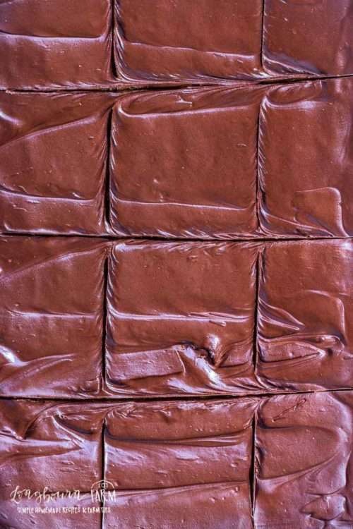 Close-up of sliced chocolate peanut butter cookie bars.