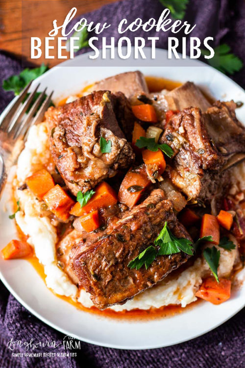 Making braised beef short ribs in the slow cooker is so incredibly easy and delicious! This cooking method gives fall off the bone and flavorful results every time.#shortribs #beefshortribs #beefshortribsslowcooker #beefshortribscrockpot #beefshortribsbraised #beefshortribseasy #beefshortribsbonein #beefshortribsbest #beefshortribsrecipe #beefshortribshowtocook