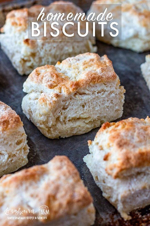 Homemade biscuits are quick, easy, and amazingly fluffy. This recipe uses just 5 simple ingredients and comes together in a flash. #homemadebiscuits #homemadebiscuitseasy #homemadebiscuitsrecipe #homemadebiscuitsfromscratch #homemadebiscuitsfluffy