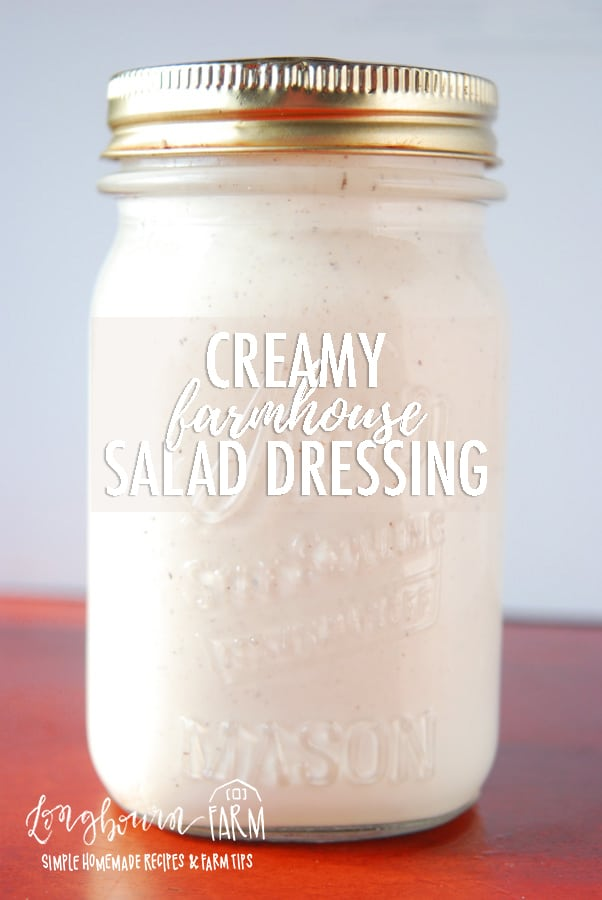 This creamy farmhouse salad dressing is tangy, flavorful, and so easy to make. It goes great on a salad with sturdy greens like romaine or iceberg lettuce. #creamysaladdressing #creamydressing #saladdressing #mayosaladdressing #sourcreamdressing #ranchdressing #creamysaladdressingeasy #creamysaladdressinghomemade via @longbournfarm