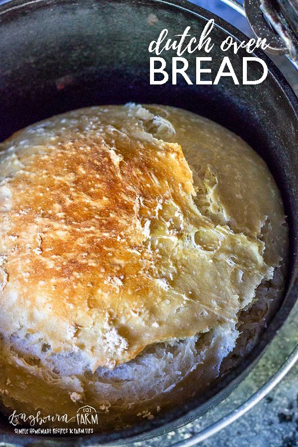 No knead dutch oven bread is so easy to make and turns out perfectly every time, even if you are a beginner. Bake this with coals or in the oven, it's amazing either way! #noknead #breadbaking #dutchoven #castironcooking #castiron #bakingincastiron #dutchovenbread #nokneadbread #dutchovenbreadeasy #dutchovenbreadrecipe via @longbournfarm